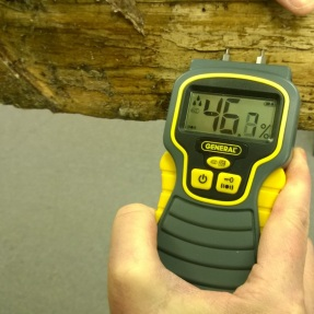 A moisture meter can tell you whether your firewood is properly seasoned. This wood is too wet to burn.